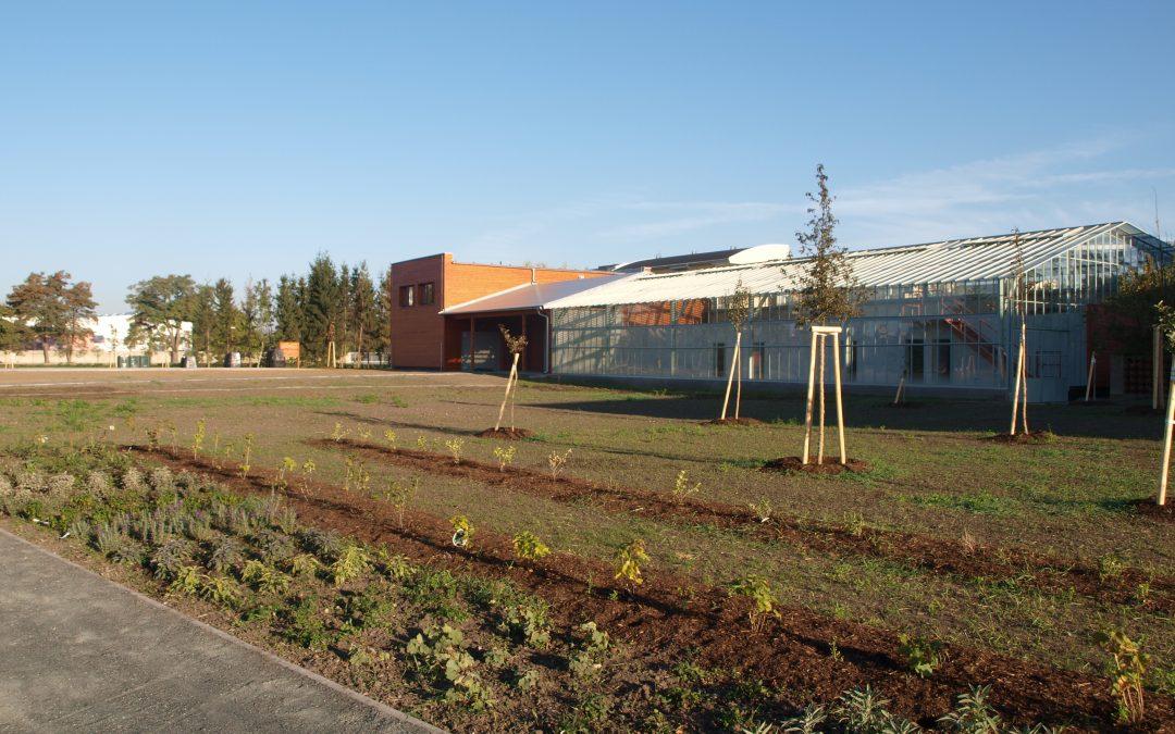Školní ekologická zahrada – živá laboratoř
