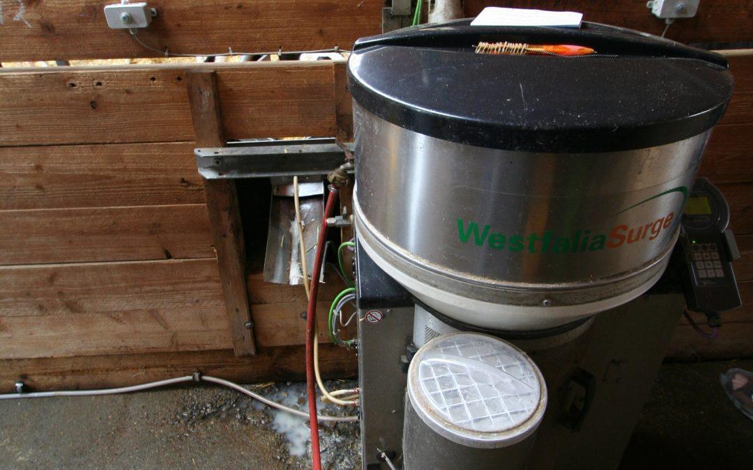 Krmný automat pro telata