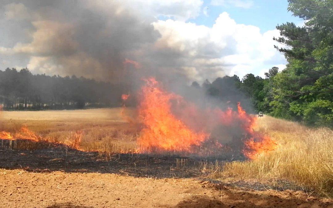 Přetrvávající vysoké teploty zvyšují riziko požáru