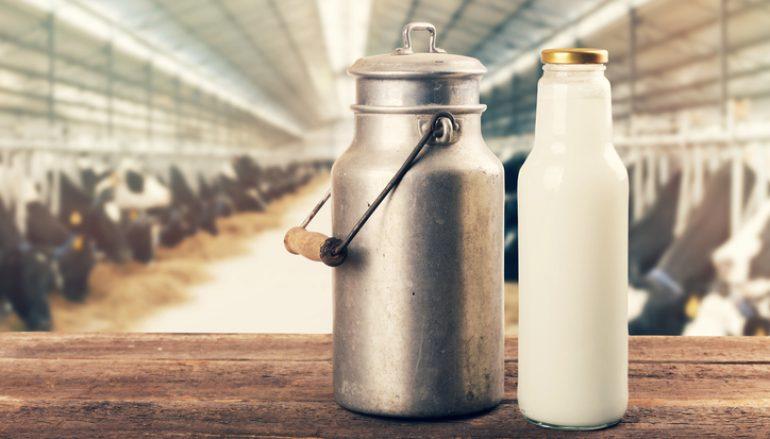 Navštivte seminář: Zpracování mléka na ekofarmách od legislativy až po distribuci zákazníkům
