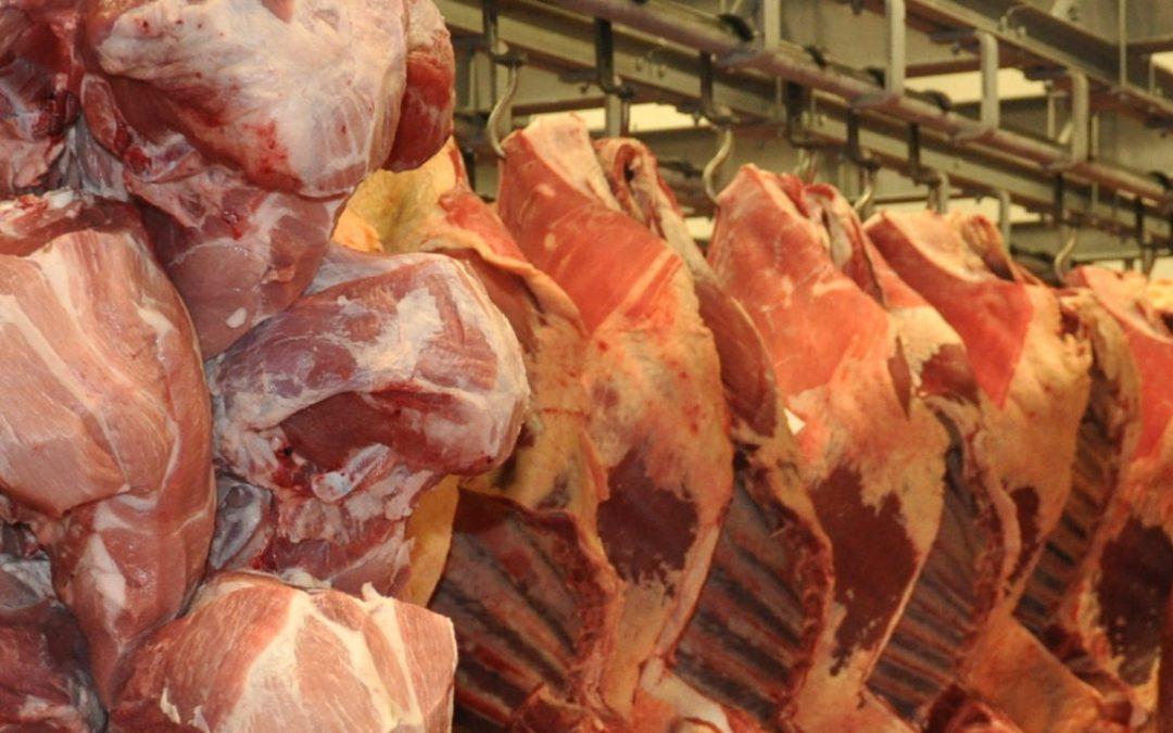 Jak zraje maso po porážce?