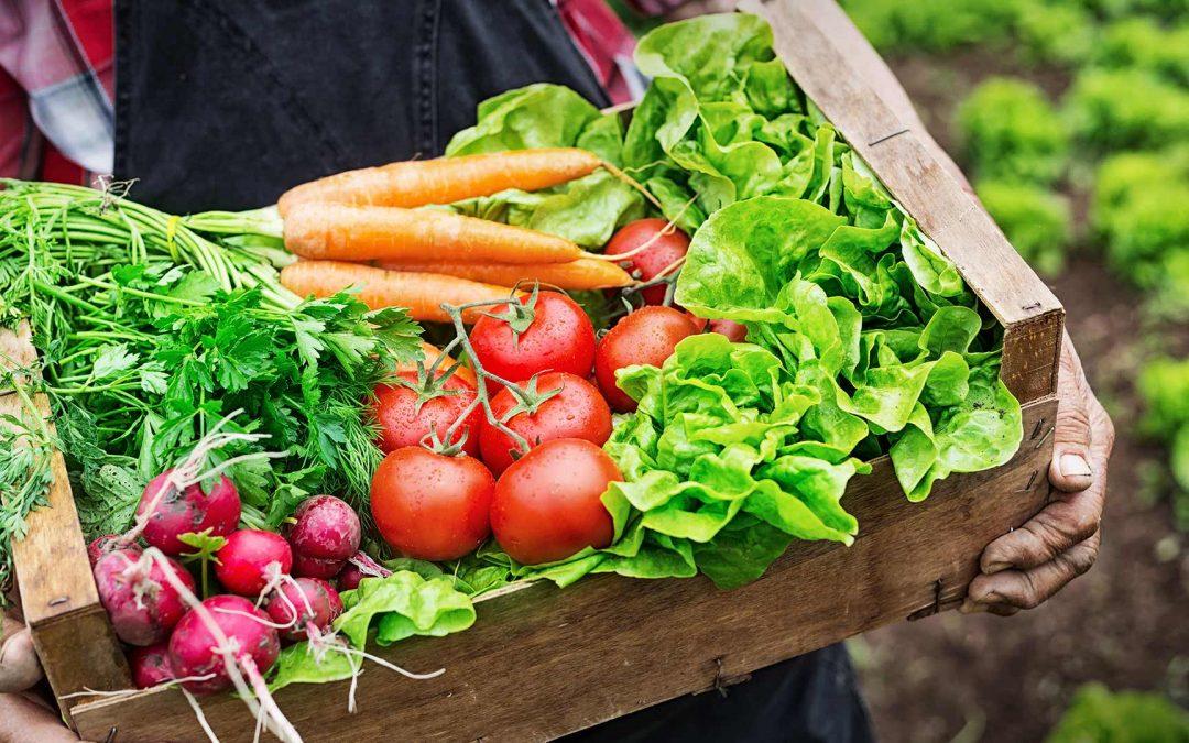 Víte kam pro biopotraviny?