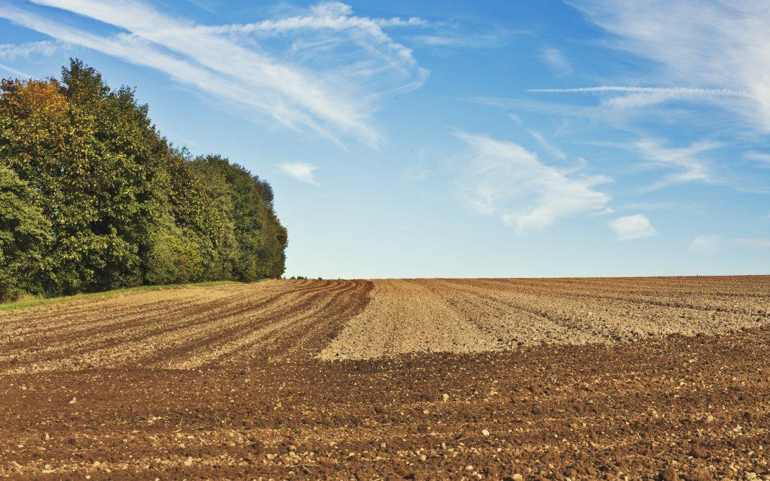 3 zásadní novinky pro zemědělce v roce 2020: jaké změny s sebou přináší novela zákona o zemědělství a co trápí český LPIS?