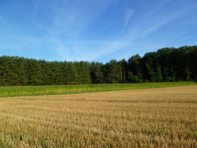 Ministr Toman převzal petici, která žádá šetrnější zemědělství