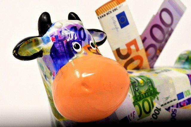 ČR odmítá podmínku skutečného zemědělce pro získávání dotací EU