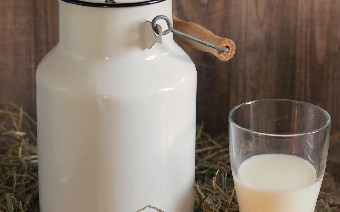 10 nejčastějších mýtů spojených s konzumací mléka