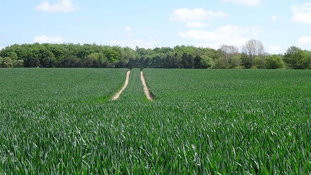 Majitelé obhospodařují více půdy, než se myslelo