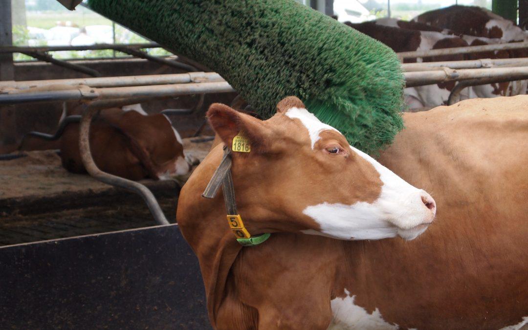 Na zvýšení soběstačnosti dostanou zemědělci a potravináři navíc 4,3 miliardy korun, rozhodla vláda