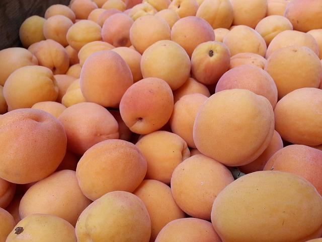 Ovocnáři: Mrazy zničily meruňky, škody 50 až 80 milionů korun