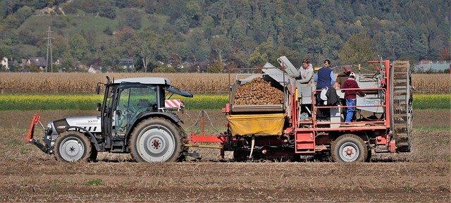 Zaměstnávání cizinců v zemědělství – 3.část: Mimořádné pracovní vízum