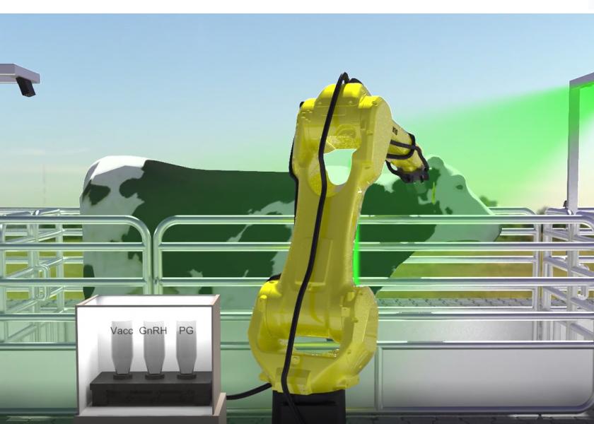 Robotický vakcinační systém šetří čas a zlepšuje zdraví stáda